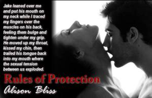 Rules of Protection Teaser 4