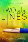 ba3f8-twobluelinesebook