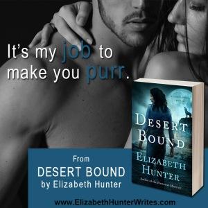 DesertBoundTeaser1